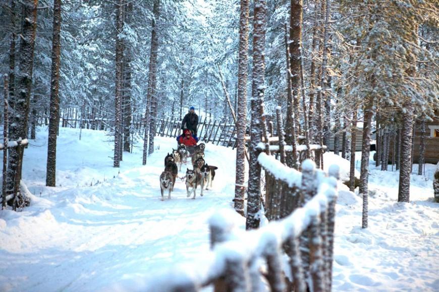 Lapland, Finland In Winter